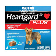 Heartgard Plus for Dog | Buy Heartgard Plus for Dogs